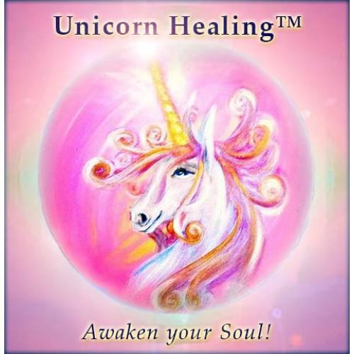 unicorncourse_logo-500x500
